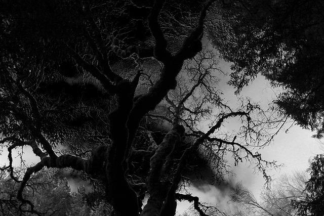 Angstauslösender dunkler Baum